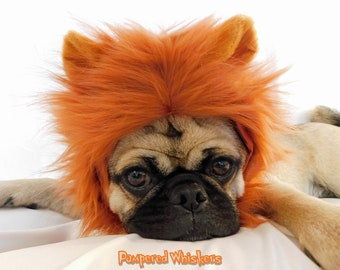 Dog Lion Mane Costume Hat- Cat Lion Mane for Dogs and cats -Dog_Cat Halloween Costume in signature gift bag  sc 1 st  Etsy & Dog lion costume | Etsy