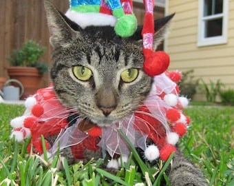 Cat Jester Christmas hat and party collar for cats and dogs