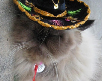Dog Cat - Birthday Hat - Customizeable Black Sombrero for dog or cat