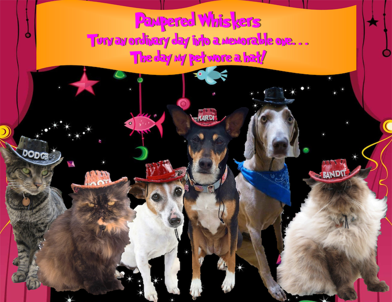 Dog/_Cat Cowboy hat Cowboy hat /_costume for dogs and catsRed/_Tan/_Black Cowboy HatMiniature Cowboy Hat
