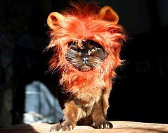 Lion Costume Hat for Cats and Dogs