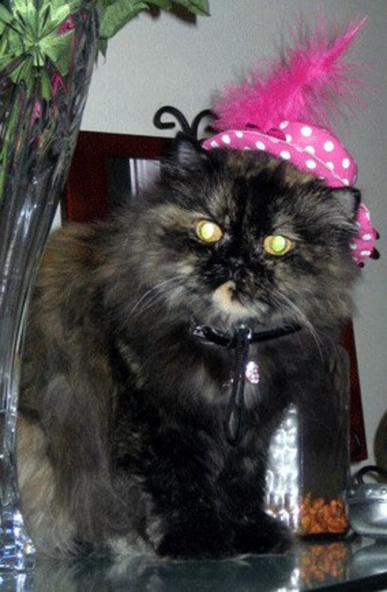 Cat Birthday Collar Cat Party Collar Pink Polka dot Hat with party collar Cat Party hat Cat Birthday Outfit Cat Birthday Hat