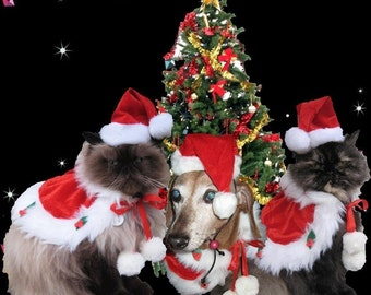 Dog Santa Hat Costume Christmas Holiday cape and Santa hat for dogs and cats
