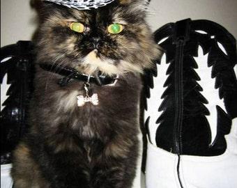 Midnight Cowboy cat hat