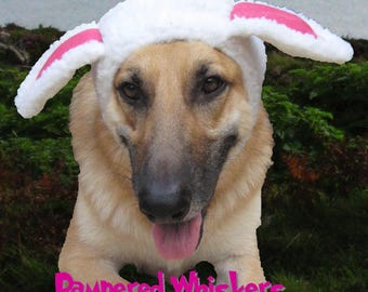 Halloween Dog - Cat  -Sheep Costume for dogs and cats