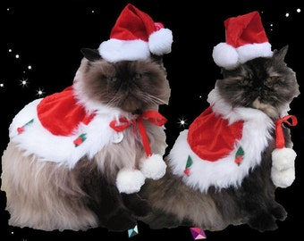 Cat Santa Hat and holiday cape for cats and dogs