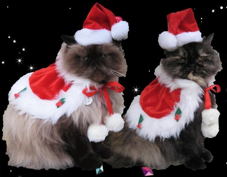 Santa Costume holiday cape and Santa hat for cats and dogs image 0