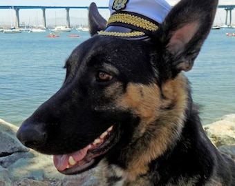 Captain hat for dogs and cats