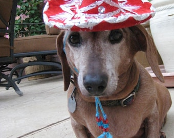 Dog-Cat Birthday Hat - Customizeable Rumba Red Sombrero for cat or dog
