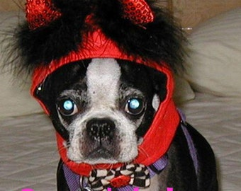 Little Devil costume hat for cat or dog