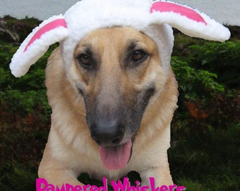 Sheep Costume - The Sheepish One hat for dogs and cats