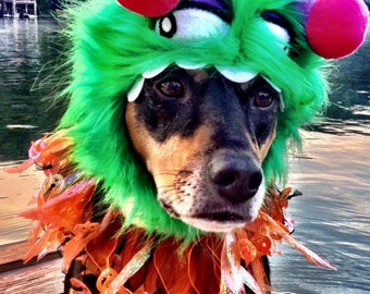 Dog-Cat Monster Costume - Halloween Dog - Halloween Cat -Little Monster Hat and Pumpkinhead party collar for dogs and cats