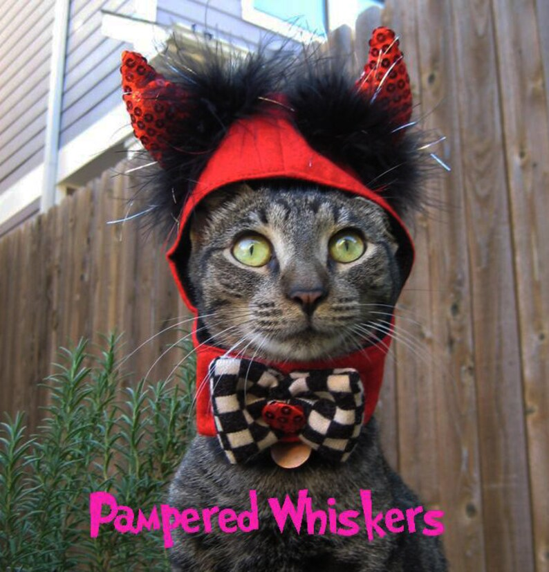 Little Devil costume for cats and dogs image 0