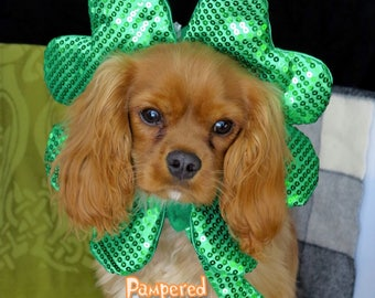 St Patricks Day Dog-Cat Hat