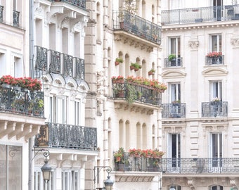 Paris Architecture Photograph - Window Boxes and Lamp Posts, Travel Photography, Large Wall Art, Neutral French Home Decor, Fine Art Photo