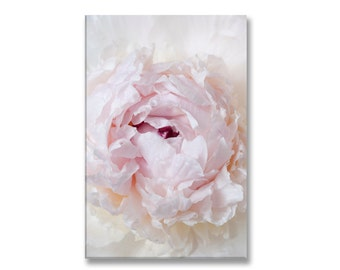 Paris Photo on Canvas, French Peony, Fine Art Photograph Printed on Gallery Wrapped Canvas, Large Wall Art, French Home Decor