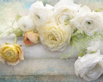 Floral Photography - White Ranunculus, Floral Still Life Photograph, Shabby Wall Decor