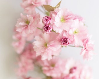 Floral Photography, Cherry Blossoms Fine Art Photograph, Romantic Decor, Large Wall Decor
