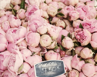 Paris Peony Photograph -  Sea of Peonies, Pink Peonies at the Market, Large Wall Art, Floral French Home Decor