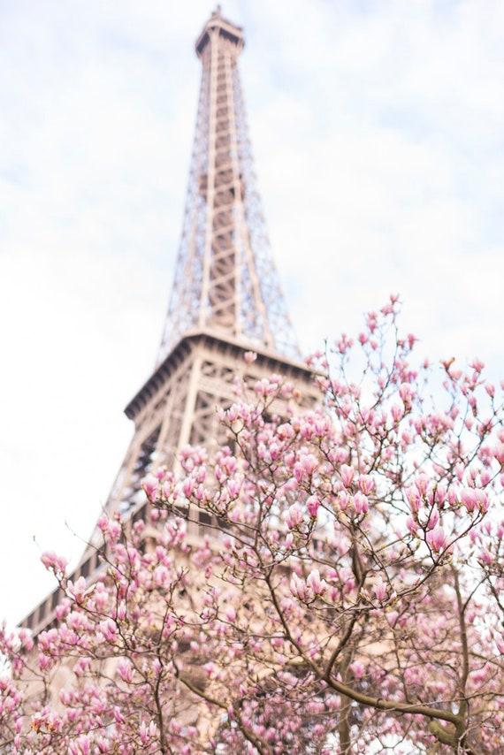 Paris-Fotografie Magnolien am Eiffelturm Frühling in Paris | Etsy