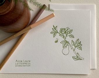 Letterpress Greeting Card Sets