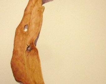 Gum leaf -- watercolor