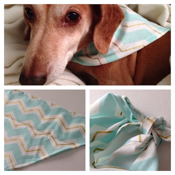 Poocci White, Blue & Gold Chevron | Dog Bandana