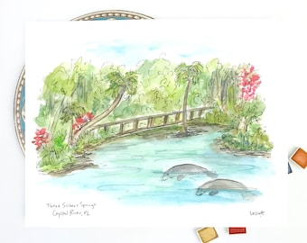 Crystal River, Florida Manatees, Nautical Illustration, gulf coast, Three Sisters Springs Coastal Art, watercolor print 8x10
