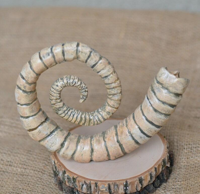 Organic ornamental Underwater ceramic sculpture Nature inspired ceramic art Hand cuilt ceramics. Marine ornamental Decayed sea life
