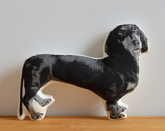 Silkscreen Dachshund Pillow