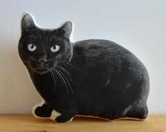 Silkscreen Black Cat Pillow