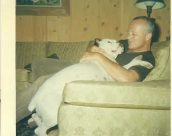 1960s A Man With His Baby Big White Bulldog Lap Dog on Couch 60s Vintage Photograph Color Photo