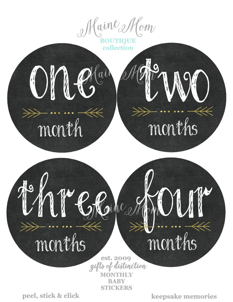 Girls Months 1-12 Baby Milestone Stickers Baby Monthly Stickers for Boys