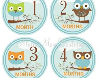 Baby Boy Monthly Stickers, Baby Month Stickers, Photo Prop, Baby Shower  Photo Prop Sticker Owls Blue Brown Orange Green