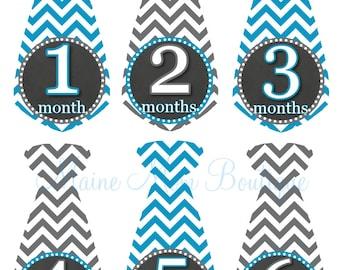 Baby Boy Monthly Tie Stickers Month Milestone Stickers Baby Boy  Chevron Blue Grey Newborn Baby Shower  Photo