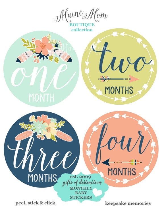 sale baby girl month stickers baby monthly stickers floral etsy