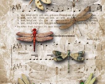 Dragonflies Decoupage Rice Paper R0570-1 x A4 Sheet of decoupage Rice Paper