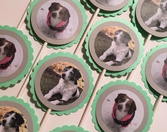 Pet (dog, cat, etc) birthday photo cupcake toppers and tags