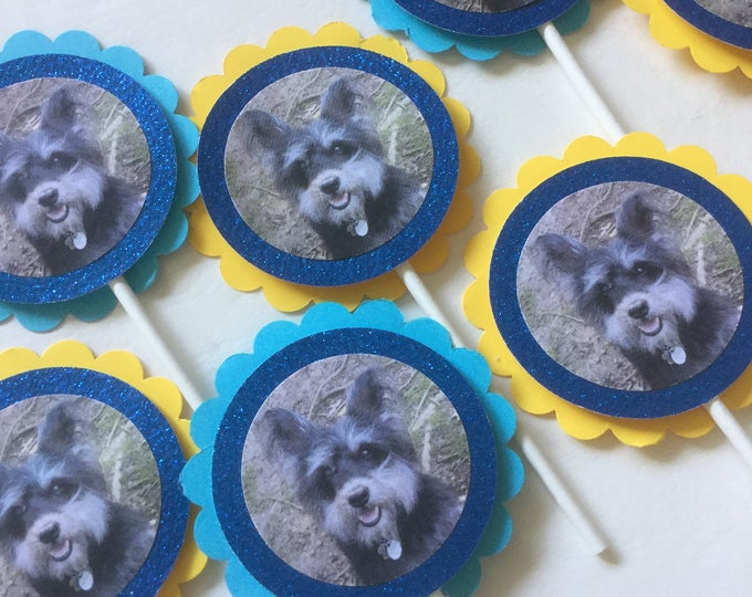 Pet party cupcake toppers