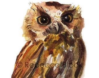 Owl print from original watercolor illustration art