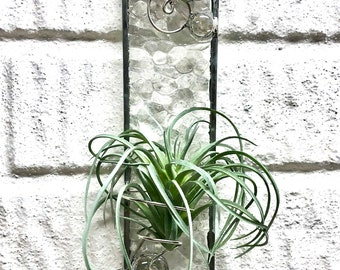 Air Plant Holder, Stained Glass