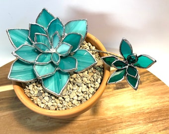 Hen & Chick Pot, turquoise