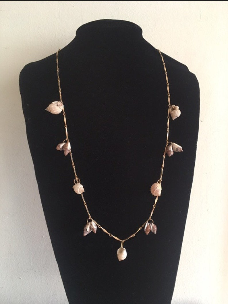 Long Vintage Seashell Necklace with Segmented Gold Chain image 0