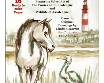 Chincoteague Pony and Assateague Wild Life Download and Color Pages  LLMartin