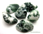 Tree Agate Tumbled Stone, Rock Hound, Crystal Healing, Stones, Feng Shui, Reiki, Grids, Crystal Supplies, Crystal Jewelry, Meditation