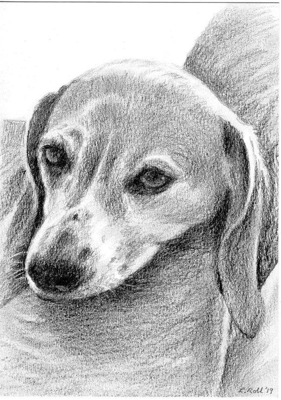 Custom 5x7 Pet Portrait in Graphite Pencil
