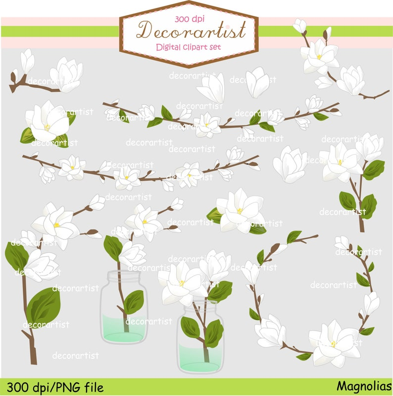 On Sale Flowers Magnolia Clipart White Flowers Clipart Etsy