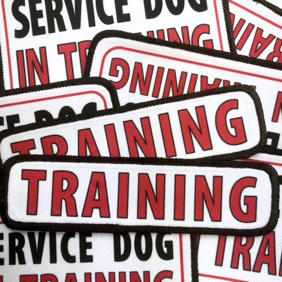 2 Set 2x6 Large SERVICE DOG Sew Iron On Applique Embroidery Patches for Vest