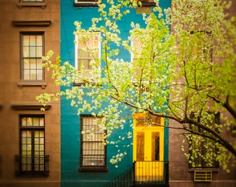 New York Apartments, Greenwich Village Nyc Spring  Chelsea West East Village Manhattan Cherry Trees nyc64