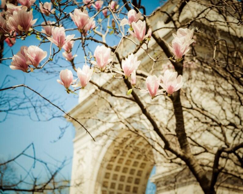 Image result for washington square park flowers